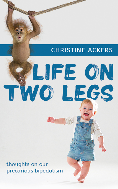 Life on Two Legs: thoughts on our precarious bipedalism